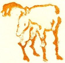 10-caballo-5